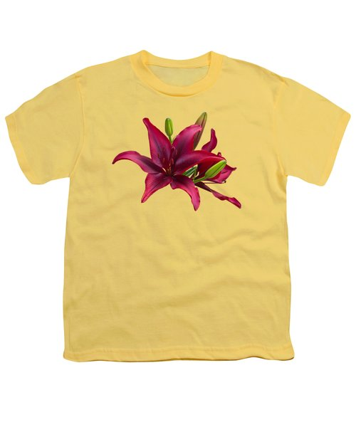 Red Lilies Youth T-Shirt by Jane McIlroy