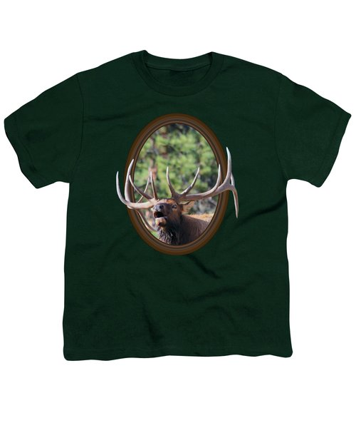 Colorado Bull Elk Youth T-Shirt by Shane Bechler