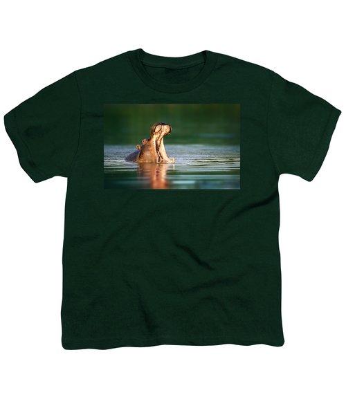 Hippopotamus Youth T-Shirt by Johan Swanepoel