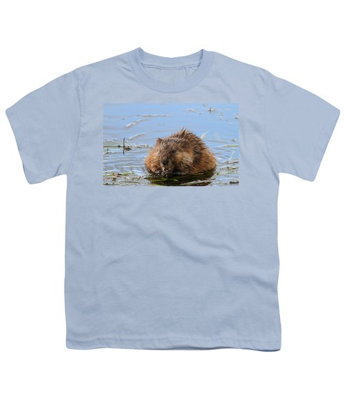 Beaver Portrait Youth T-Shirt by Dan Sproul