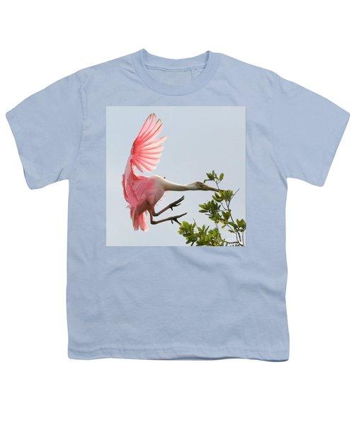 Rough Landing Youth T-Shirt by Carol Groenen