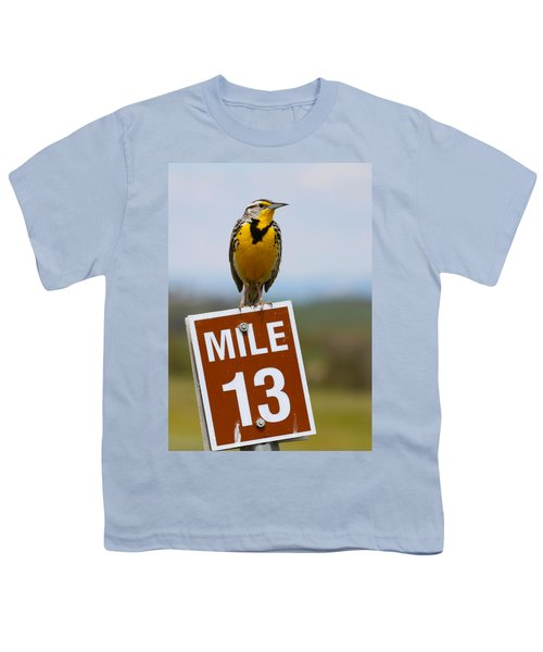 Western Meadowlark On The Mile 13 Sign Youth T-Shirt by Karon Melillo DeVega