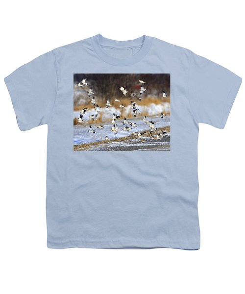 Snow Buntings Youth T-Shirt by Tony Beck