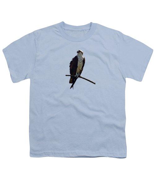 Osprey Youth T-Shirt by Deborah Good