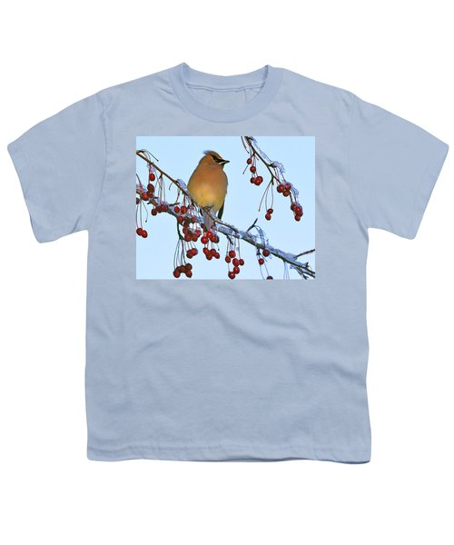 Frozen Dinner  Youth T-Shirt by Tony Beck
