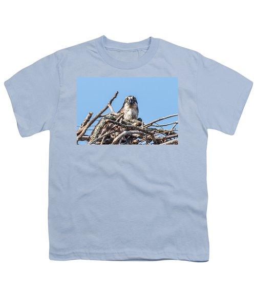 Osprey Eyes Youth T-Shirt by Paul Freidlund
