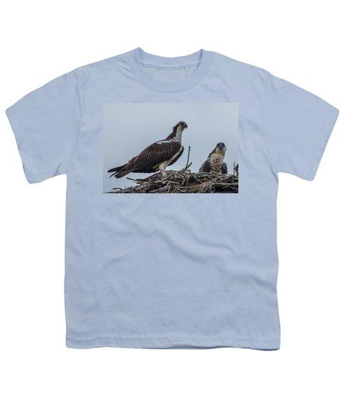 Osprey On A Nest Youth T-Shirt by Paul Freidlund