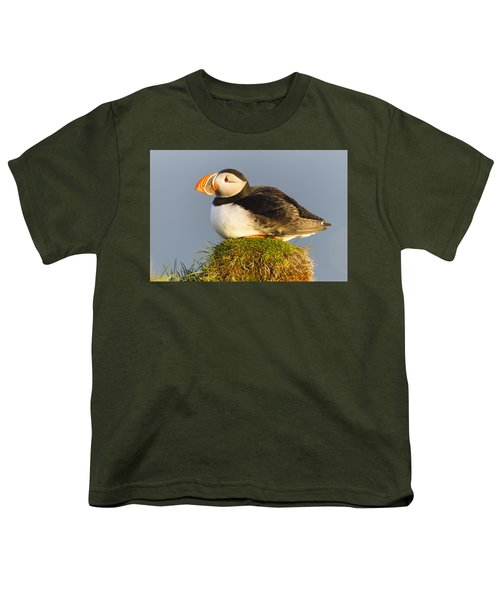 Atlantic Puffin Iceland Youth T-Shirt by Peer von Wahl