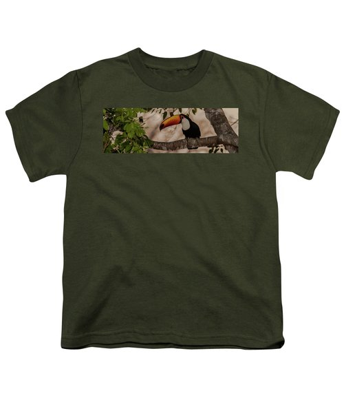 Close-up Of Tocu Toucan Ramphastos Toco Youth T-Shirt by Panoramic Images