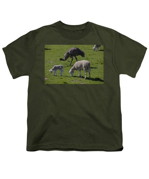 Emu And Sheep Youth T-Shirt by Garry Gay