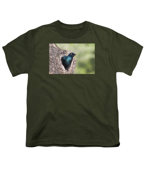 Greater Blue-eared Glossy-starling Youth T-Shirt by Andrew Schoeman