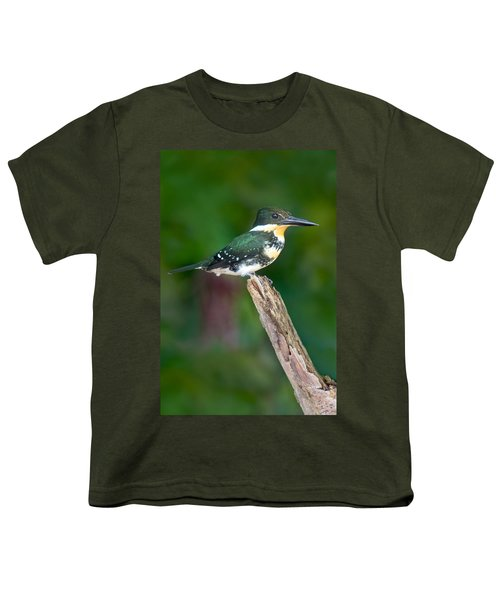 Green Kingfisher Chloroceryle Youth T-Shirt by Panoramic Images