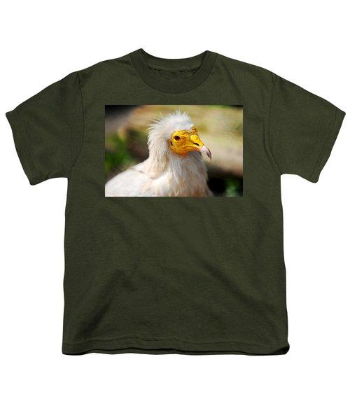 Pharaoh Chicken. Egyptian Vulture Youth T-Shirt by Jenny Rainbow