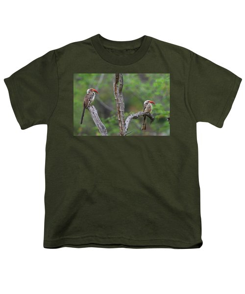 Red-billed Hornbills Youth T-Shirt by Bruce J Robinson