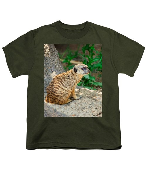 Watchful Meerkat Vertical Youth T-Shirt by Jon Woodhams