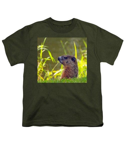 Chucky Woodchuck Youth T-Shirt by Paul Ward