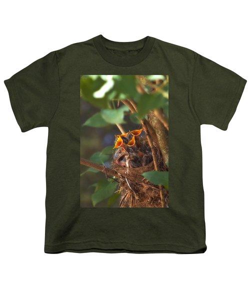Feeding Time Youth T-Shirt by Joann Vitali