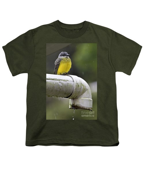 Grey-capped Flycatcher Youth T-Shirt by Heiko Koehrer-Wagner