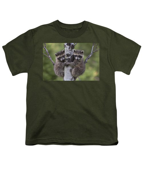 Raccoon Two Babies Climbing Tree North Youth T-Shirt by Tim Fitzharris