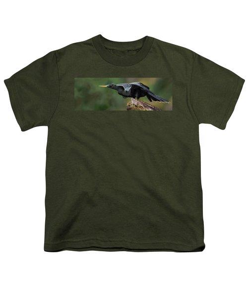 Anhinga Anhinga Anhinga, Costa Rica Youth T-Shirt by Panoramic Images