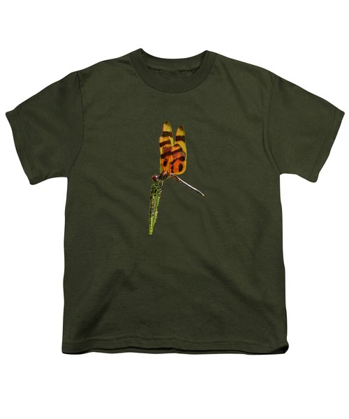 Halloween Pennant Dragonfly .png Youth T-Shirt by Al Powell Photography USA
