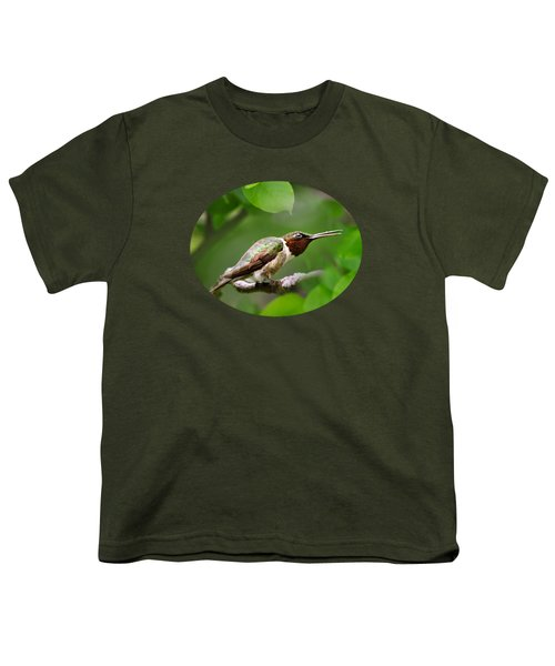 Hummingbird Hiding In Tree Youth T-Shirt by Christina Rollo