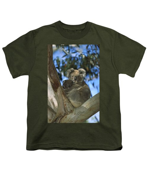 Koala Phascolarctos Cinereus Mother Youth T-Shirt by Konrad Wothe