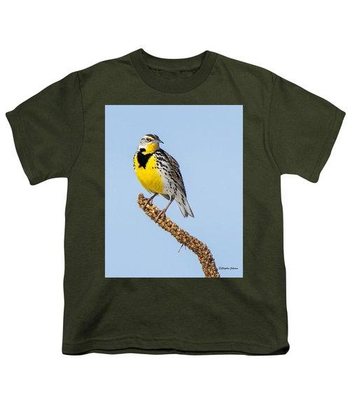 Meadowlark On Mullein Stalk Youth T-Shirt by Stephen Johnson