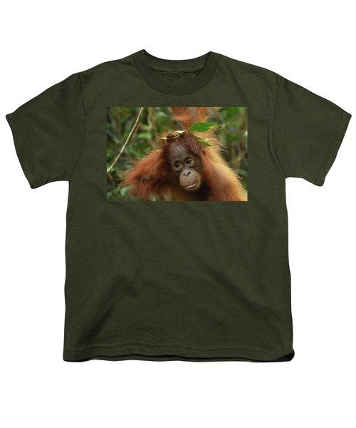Orangutan Pongo Pygmaeus Baby, Camp Youth T-Shirt by Thomas Marent