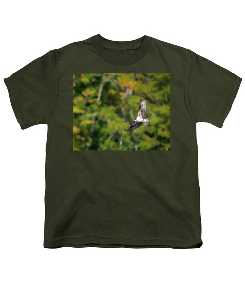Osprey Youth T-Shirt by Bill Wakeley