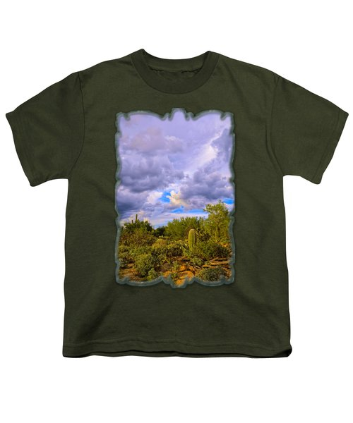 Sonoran Desert V13 Youth T-Shirt by Mark Myhaver