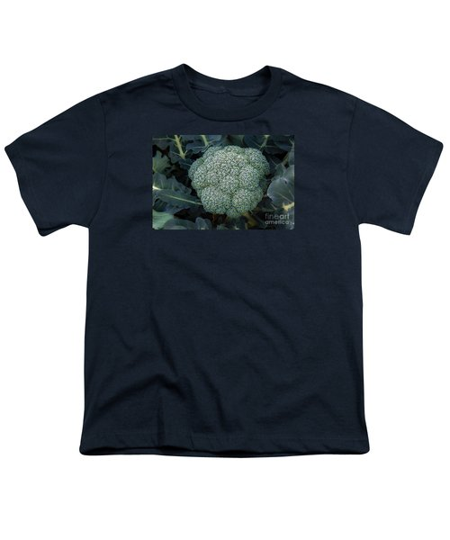 Broccoli Youth T-Shirt by Robert Bales