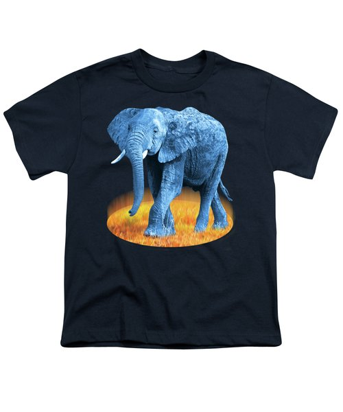 Elephant - World On Fire Youth T-Shirt by Gill Billington