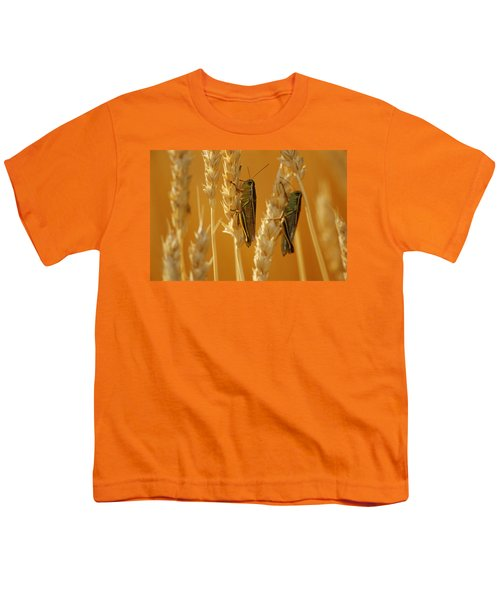 Grasshoppers On Wheat, Treherne Youth T-Shirt by Mike Grandmailson