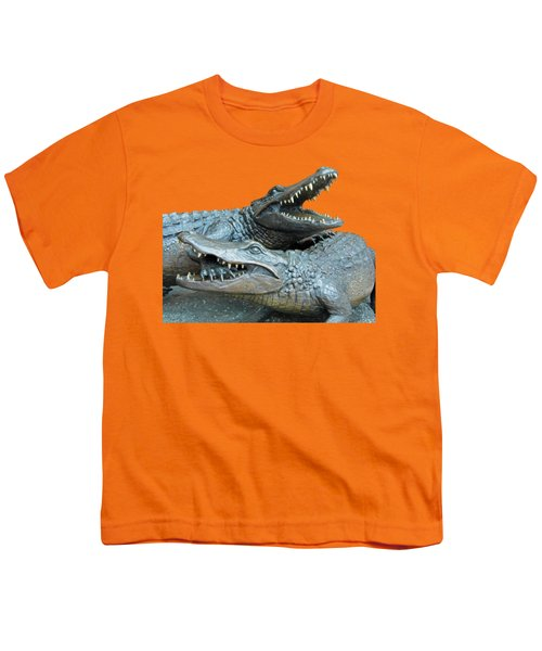 Dueling Gators Transparent For Customization Youth T-Shirt by D Hackett