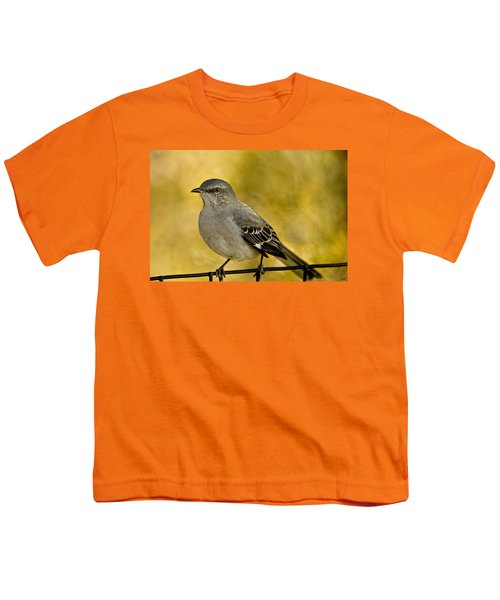 Northern Mockingbird Youth T-Shirt by Chris Lord
