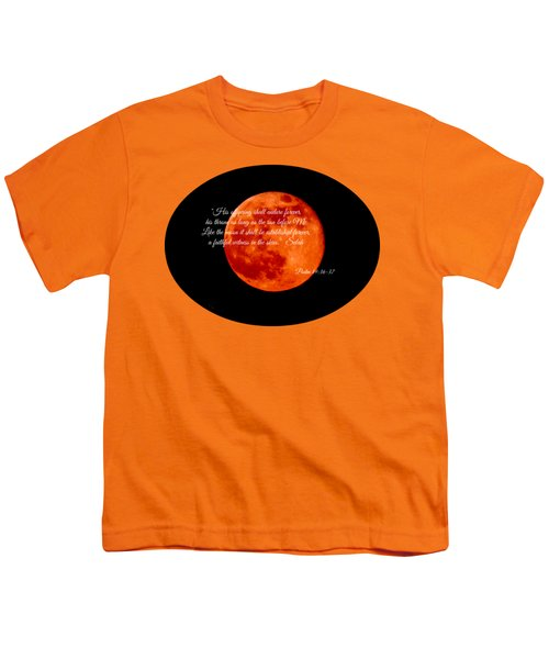 Strawberry Moon Youth T-Shirt by Anita Faye