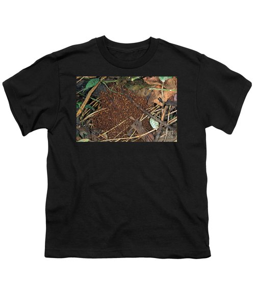 Army Ant Bivouac Site Youth T-Shirt by Gregory G. Dimijian, M.D.