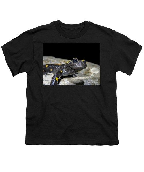 Fire Salamander Salamandra Salamandra Youth T-Shirt by Shay Levy