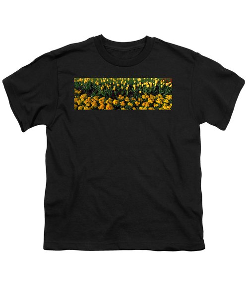 Flowers In Hyde Park, City Youth T-Shirt by Panoramic Images