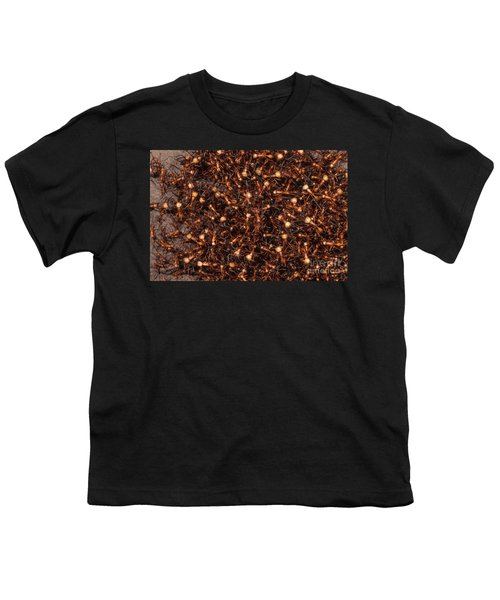 Army Ants Youth T-Shirt by Art Wolfe