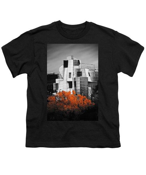 autumn at the Weisman Youth T-Shirt by Matthew Blum