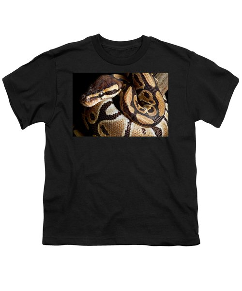 Ball Python Python Regius Youth T-Shirt by David Kenny