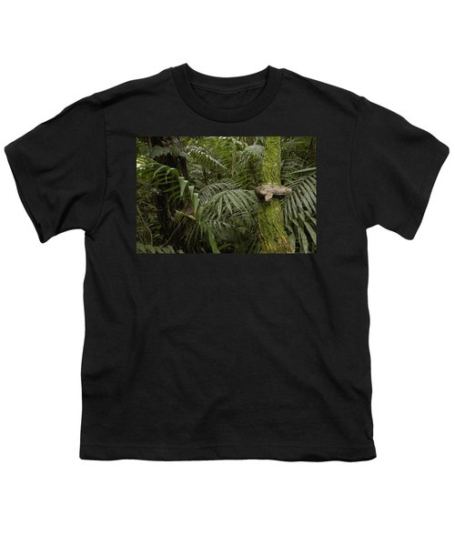 Boa Constrictor In The Rainforest Youth T-Shirt by Pete Oxford
