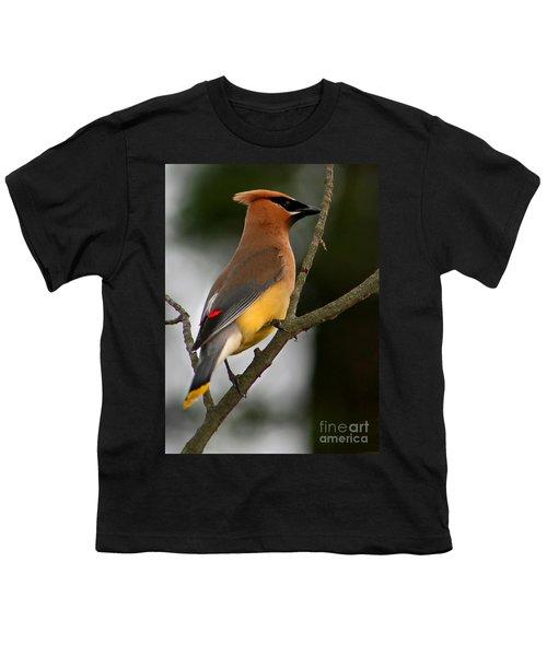 Cedar Wax Wing II Youth T-Shirt by Roger Becker