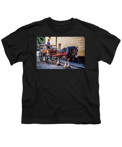 Horse And Cart Youth T-Shirt by Adrian Evans