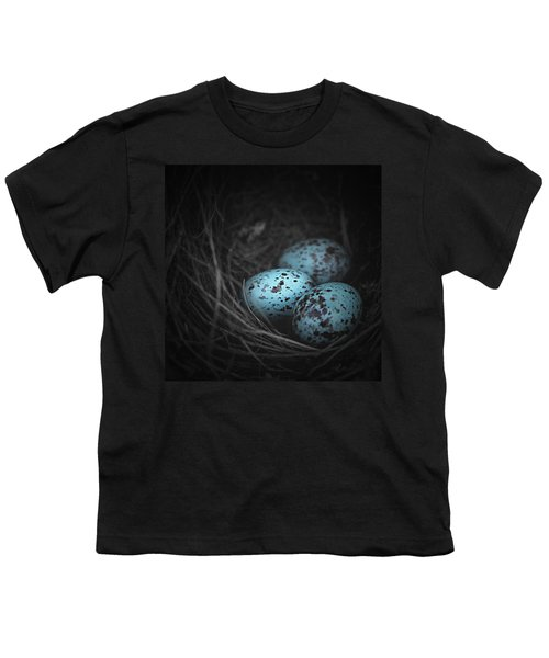 Nest Of 3  Youth T-Shirt by Trish Mistric