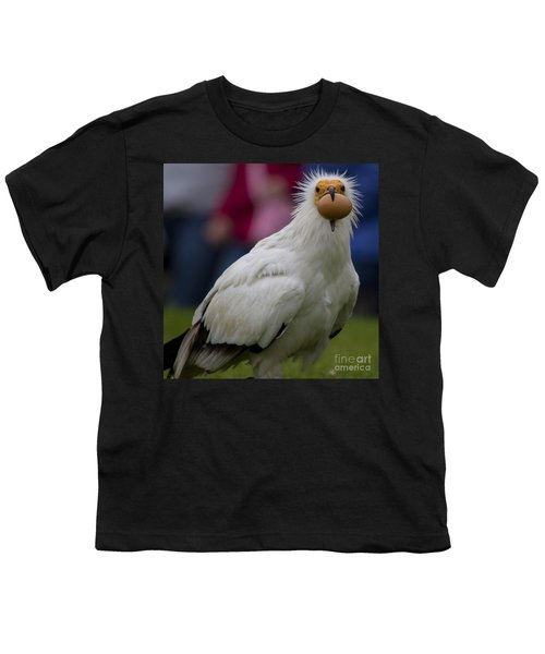 Pharaos Chicken 2 Youth T-Shirt by Heiko Koehrer-Wagner