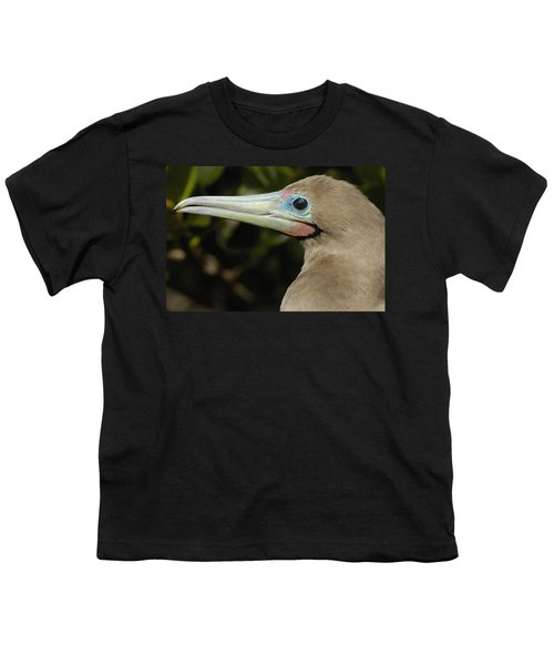 Red-footed Booby Close Up Galapagos Youth T-Shirt by Pete Oxford
