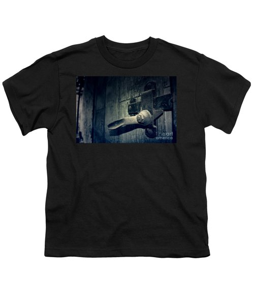 Secrets Within Youth T-Shirt by Trish Mistric